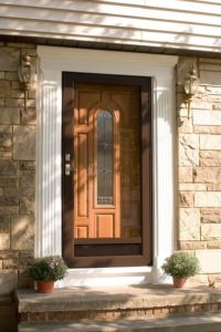 Storm Doors, Screen Door Installation | Vytex Windows on