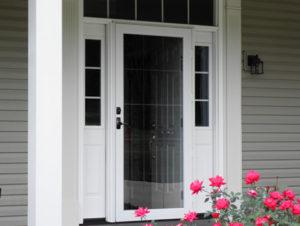 Storm Doors Washington D C Installation Vytex Windows